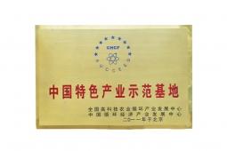 中国特色产业示范基地